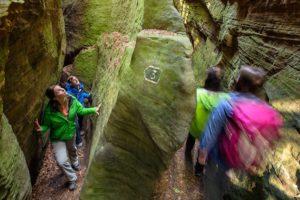Felsen im Müllerthal und den Vogesen