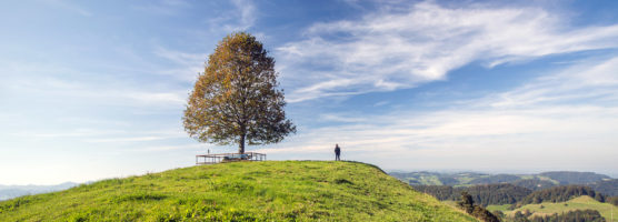 Natur schmecken und fühlen im Schweizer Neckertal