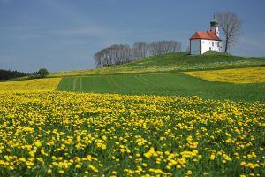 IMG_5140_Bad-Waldsee-(Volkertshaus).jpg